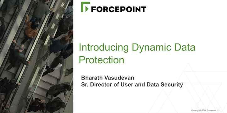A Risk-Adaptive Approach to Dynamic Data Protection