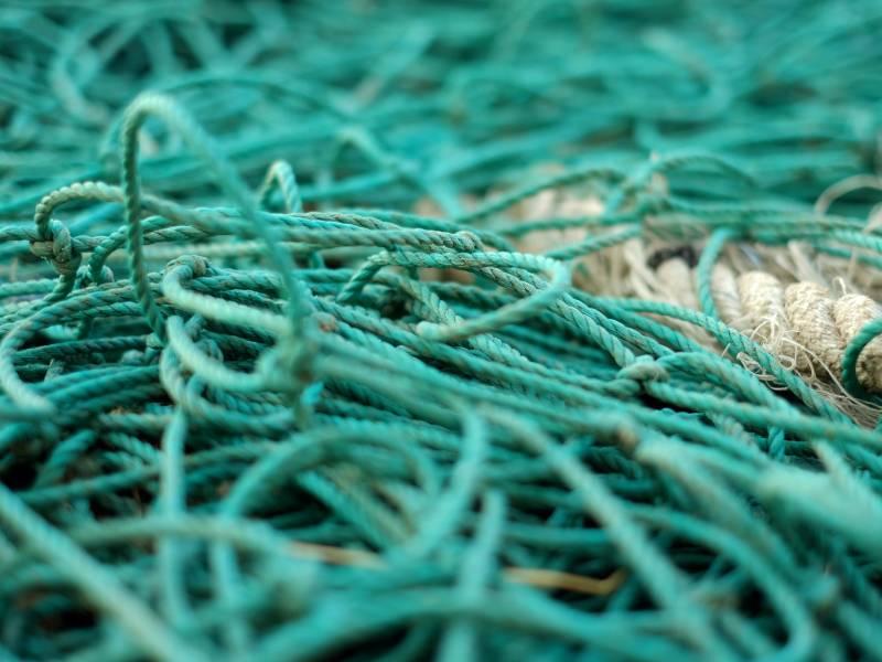 "<span>Photo by <a href=""https://unsplash.com/@ericbarbeau?utm_source=unsplash&amp;utm_medium=referral&amp;utm_content=creditCopyText"">Eric BARBEAU</a> on <a href=""https://unsplash.com/s/photos/fishing-net?utm_source=unsplash&amp;utm_medium=referral&amp;utm_content=creditCopyText"">Unsplash</a></span>"