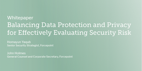 Balancing Data Protection and Privacy for Effectively Evaluating Security Risk