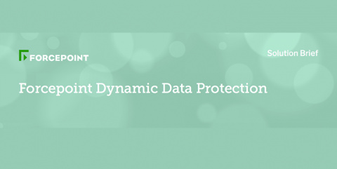 Dynamic Data Protection Solution Brief