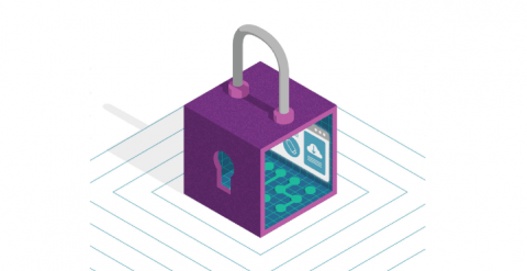 Dynamic User Protection - Privacy datasheet