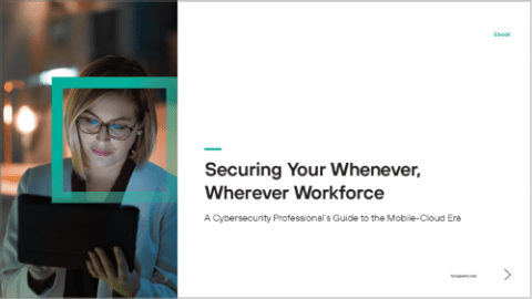 Securing Your Wherever, Whenever Workforce