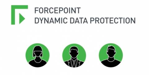 Dynamic Data Protection for Government