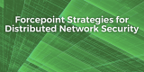 Forcepoint Strategies for Distributed Network Security